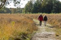 Wandel door het Drentse Landschap