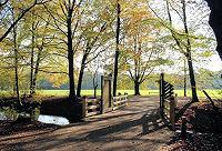Wandel door het Amsterdamse Bos