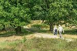 Verkiezing Mooiste wandeling 2016