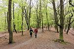 wandelroutes in Gelderland