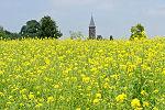 wandelroutes in Limburg