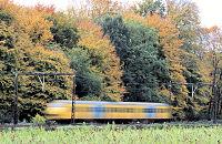 Met de trein het bos in