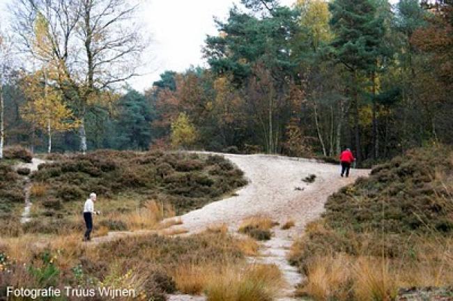 Wandeling Drakensteyn Lage Vuursche