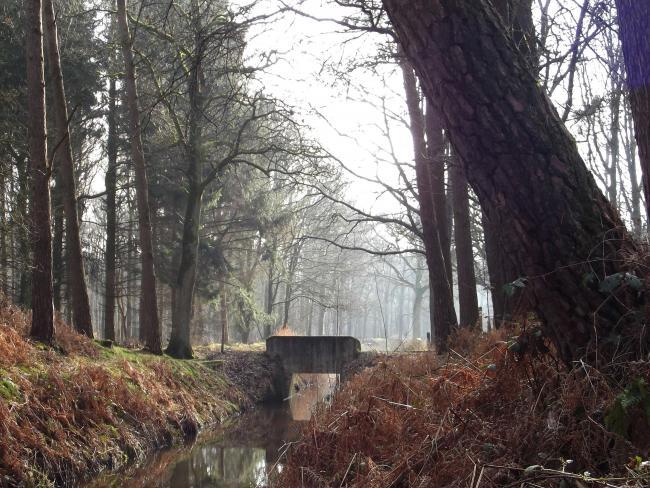 Oude Graaf-route