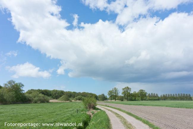 Groene Wissel Steenbergen (NB)