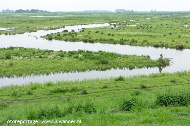 Groene Wissel Willemstad (Nld)