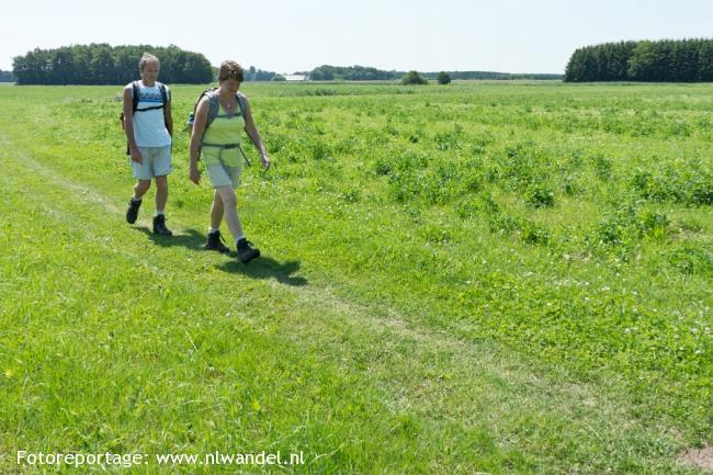 Groene Wissel Wedde