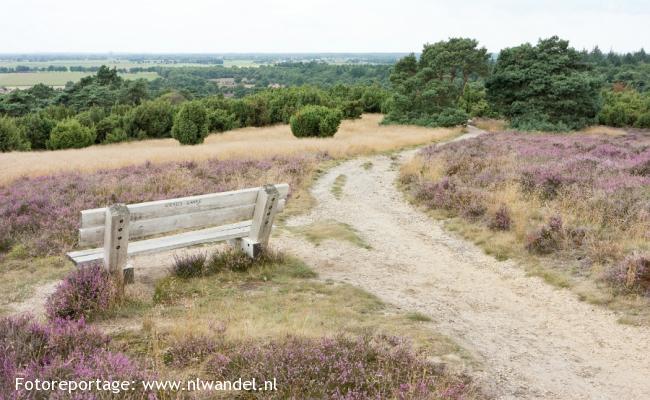 Groene Wissel Lemelerveld