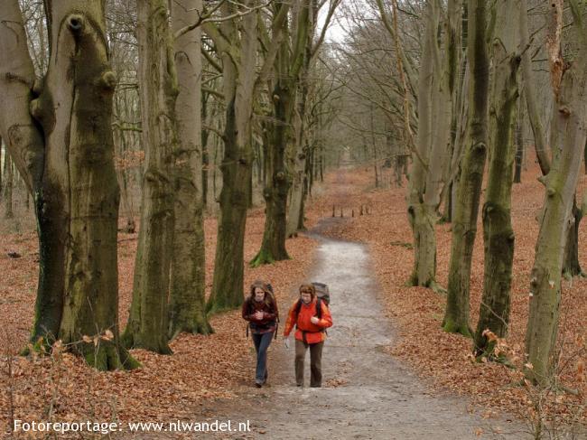 NS-wandeling Vechtdal