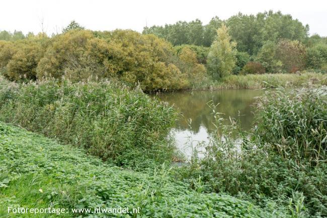 Groene Wissel Almere-Poort