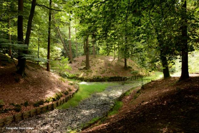 Hellendoorn - Eelerberg