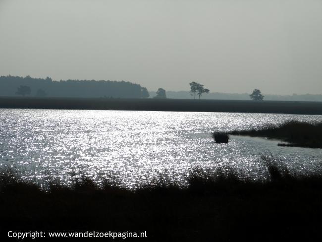 Dwingelderveld