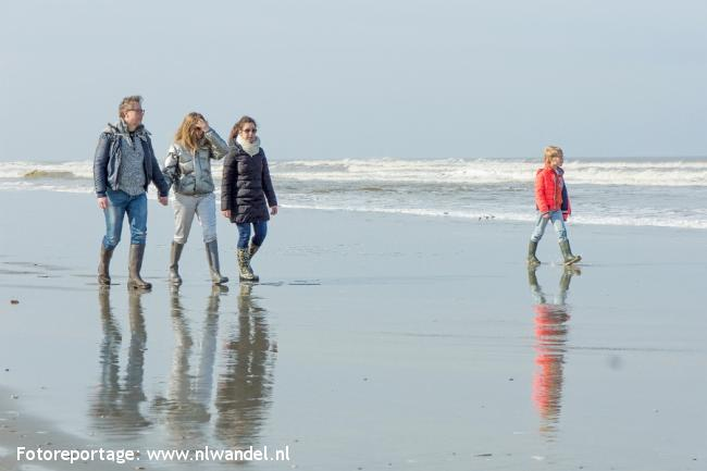 Groene Wissel Ameland, Buren