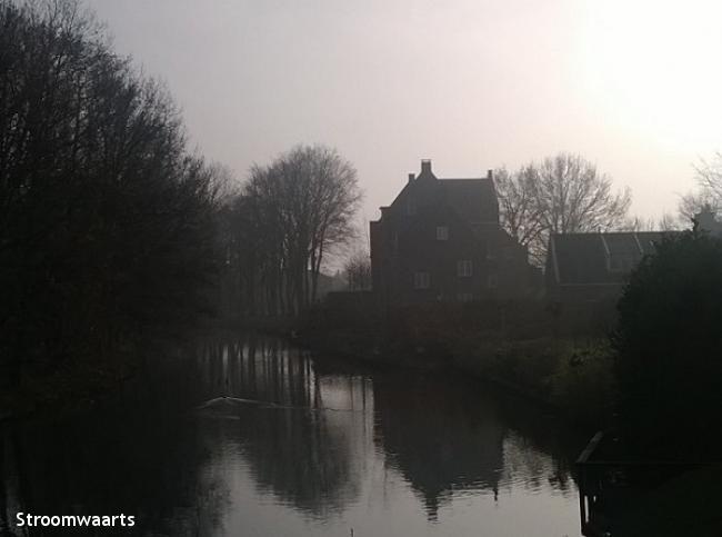 Van bosrand tot Rijnoever