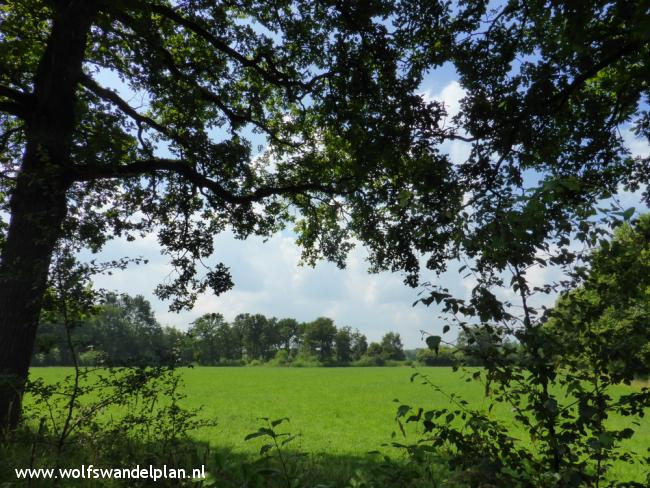Trage Tocht Landgoed DenTreek-Henschoten