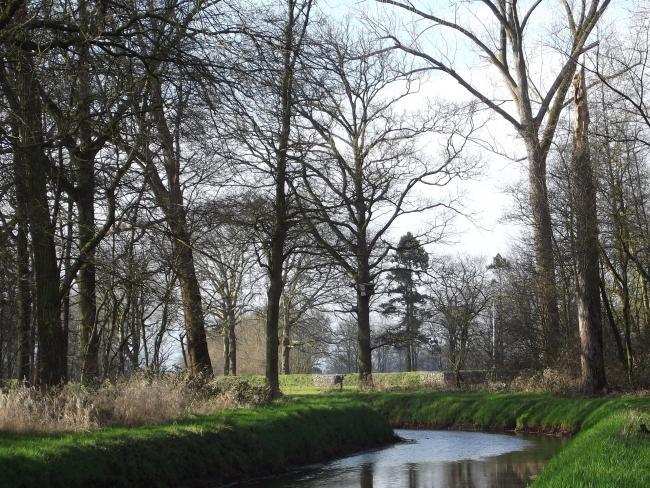 Ommetje Molenbeek