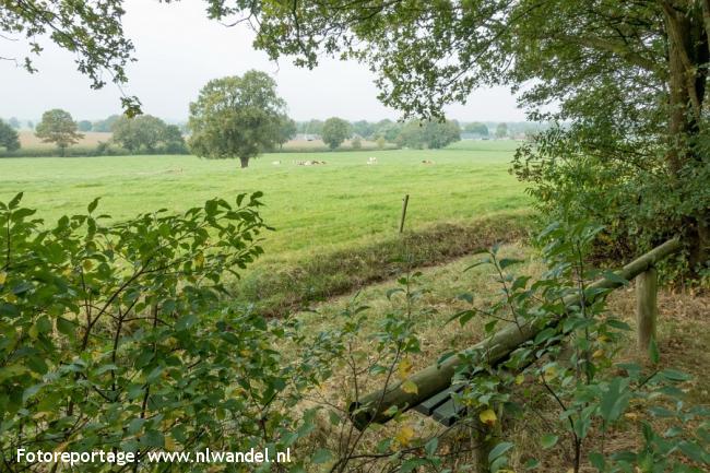 Groene Wissel Markelo 2