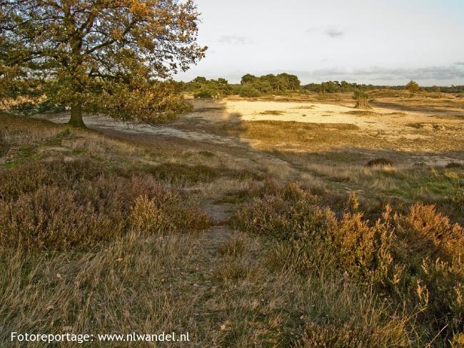 OV-Stapper Wekeromse Zand
