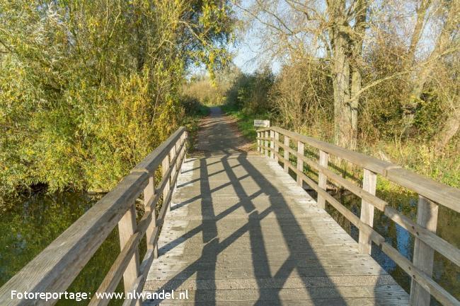 Groene Wissel Almere-Muziekwijk