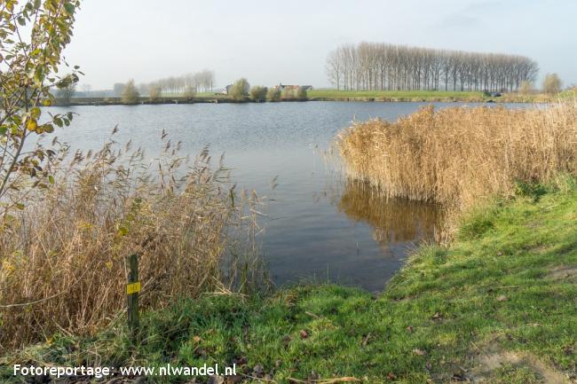 Groene Wissel Hulst 2