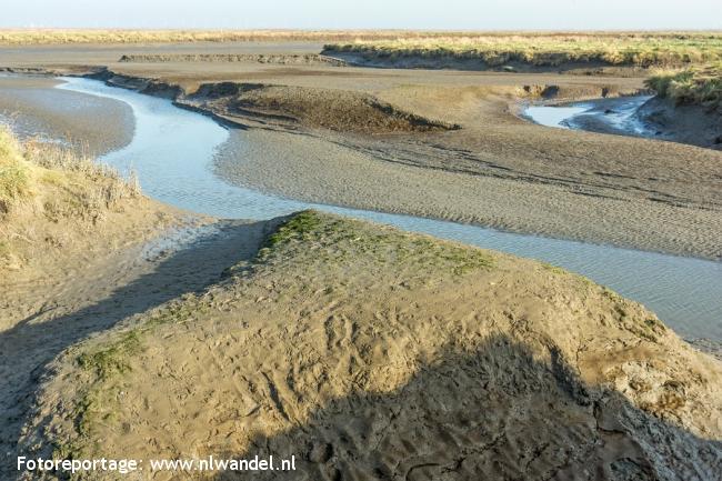 Groene Wissel Nieuw-Namen