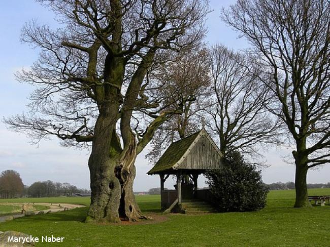 Kapelletjespad Reutum - Albergen