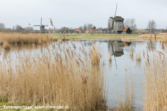 Groene Wissel Alkmaar Noord