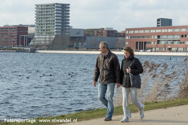 Groene Wissel Almere Parkwijk