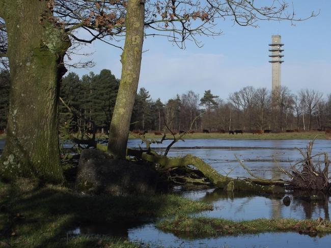 Ommetje Hoogen-Aarle