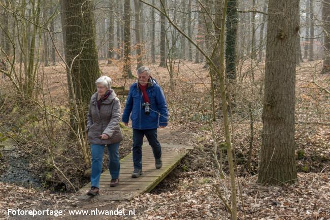 Groene Wissel Apeldoorn Osseveld