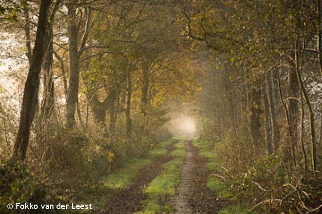 Oude paden-route Niebert-Jonkersvaart-Nuis