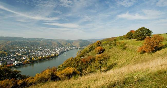 Wandelroute Rheinsteig