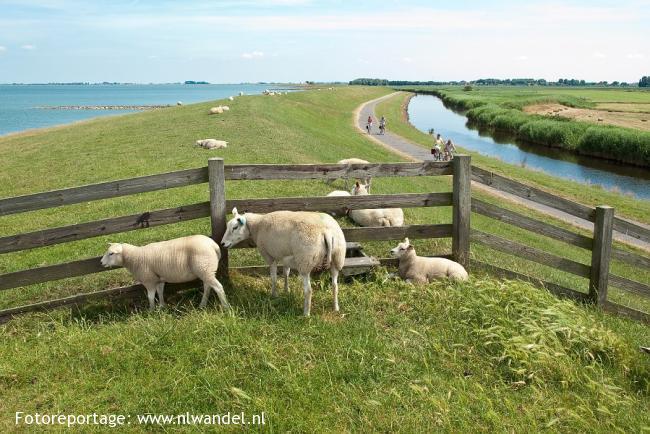 Friese IJsselmeerdijk