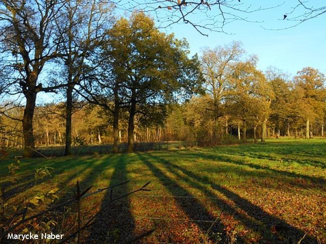 Landgoedwandeling vier landgoederen bij Heino