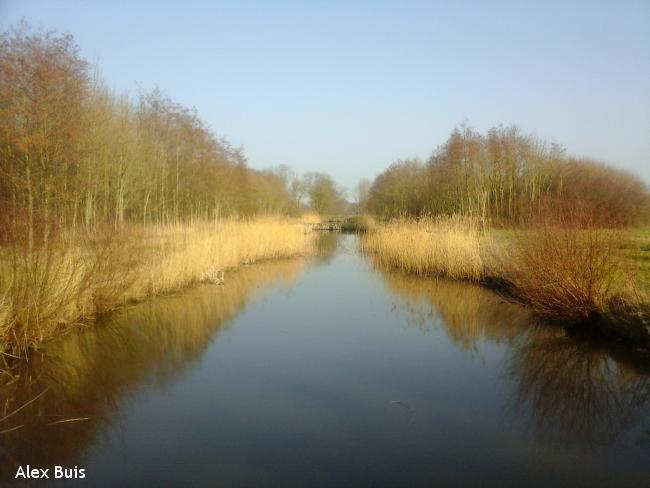 Amstelveens Groen: Middelpoldertocht