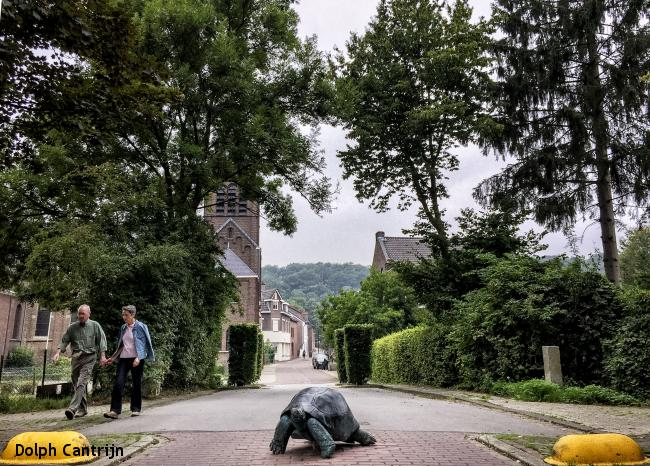 Kerkrade - Schinveld