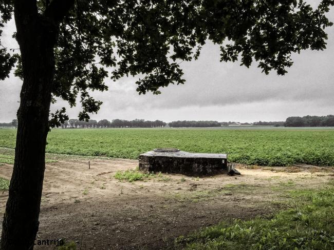 Roermond - Tegelen