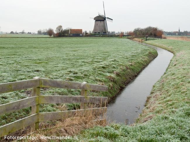 Groene Wissel Alkmaar 1