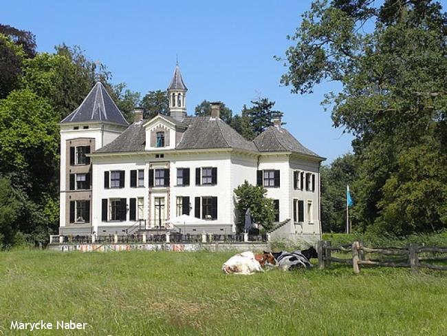 Landgoedwandeling Diepenveen