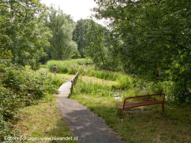 Groene Wissel Utrecht-CS