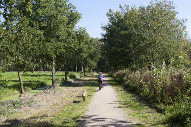 Delftse Hout en Dobbeplas route