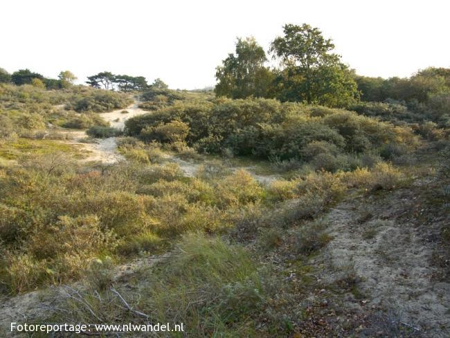 Groene Wissel Den Haag-CS