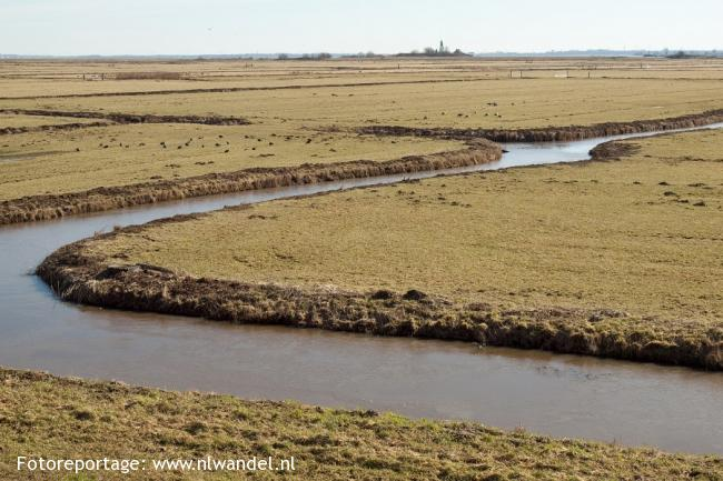 Groene Wissel Amsterdam-Muiderpoort