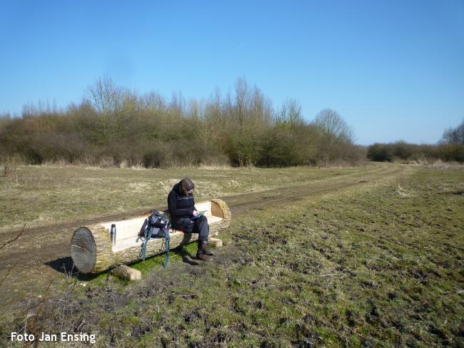 Boswandeling Horsterwold Zeewolde