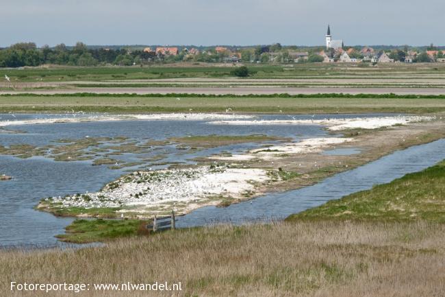Groene Wissel Den Helder 1 (Texel)