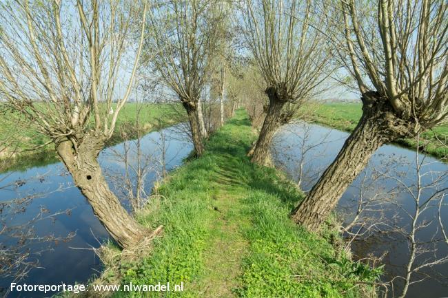 Groene Wissel Alblasserdam
