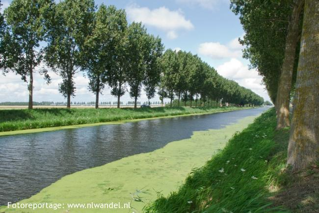 Groene Wissel Nieuw-Vennep