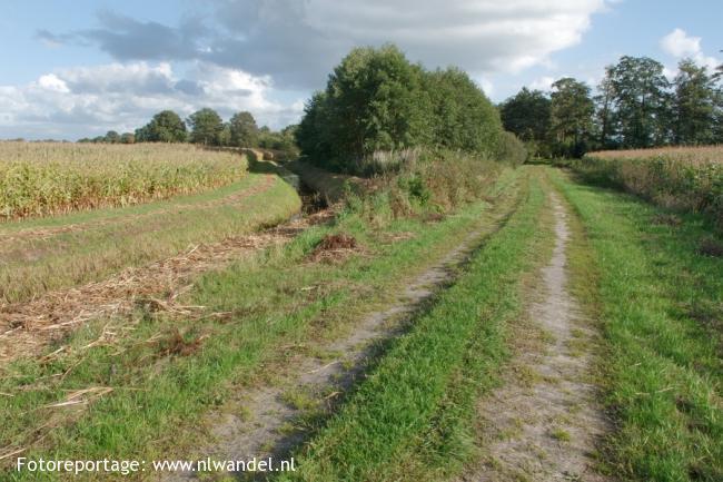 Groene Wissel Coevorden