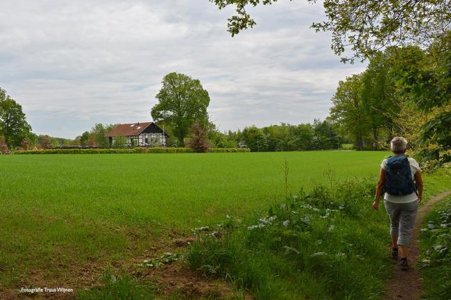 Twentse Wallen - Oldenzaal