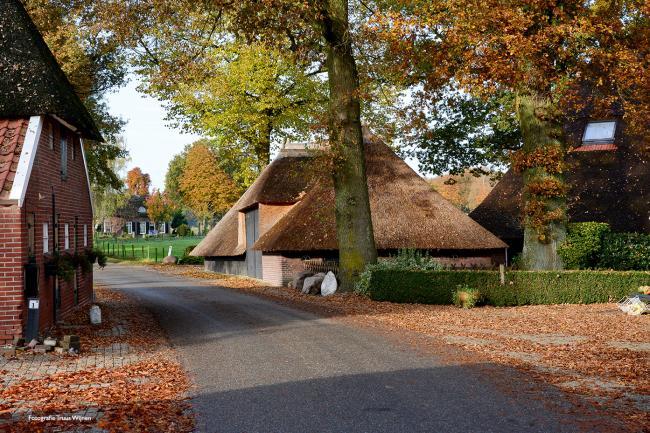 Twentse Wallen - De Borkeld